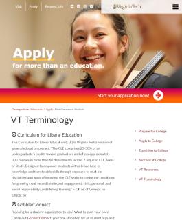 VT Terminology